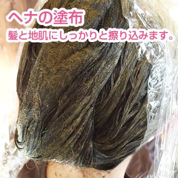ヘナの塗布-髪と地肌にしっかりと擦り込みます。